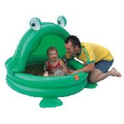Inflatable Frog Shade Pool